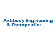 Antibody Engineering