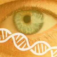 Eye-Color-Linked-to-the-Risk-of-Skin-Cancer