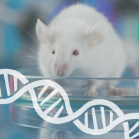Mutant Traits Found in Mice for 52 Human Disease Genes