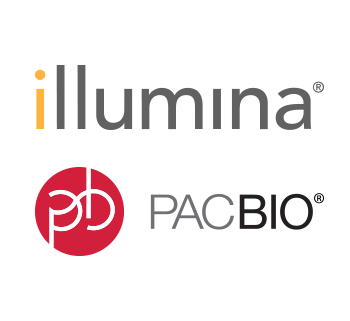 Illumina and PacBio