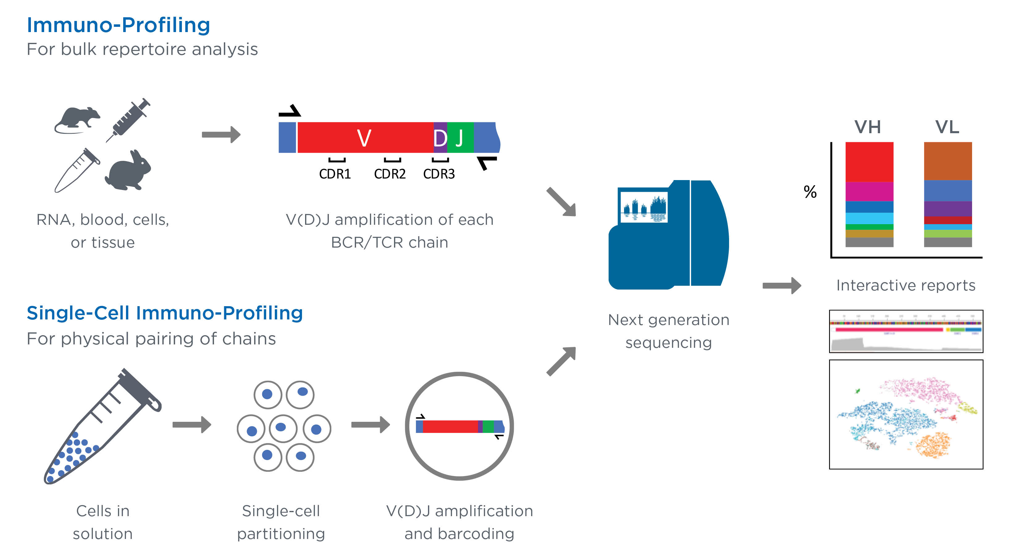 Immuno Profiling Next Generation Sequencing Genewiz